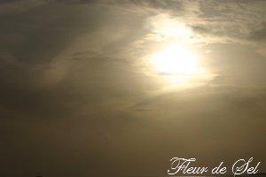 photo0102.jpg