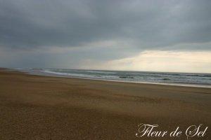 photo016.jpg