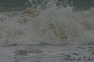 photo0181.jpg