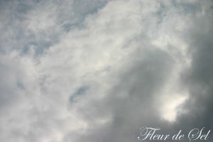 photo022.jpg